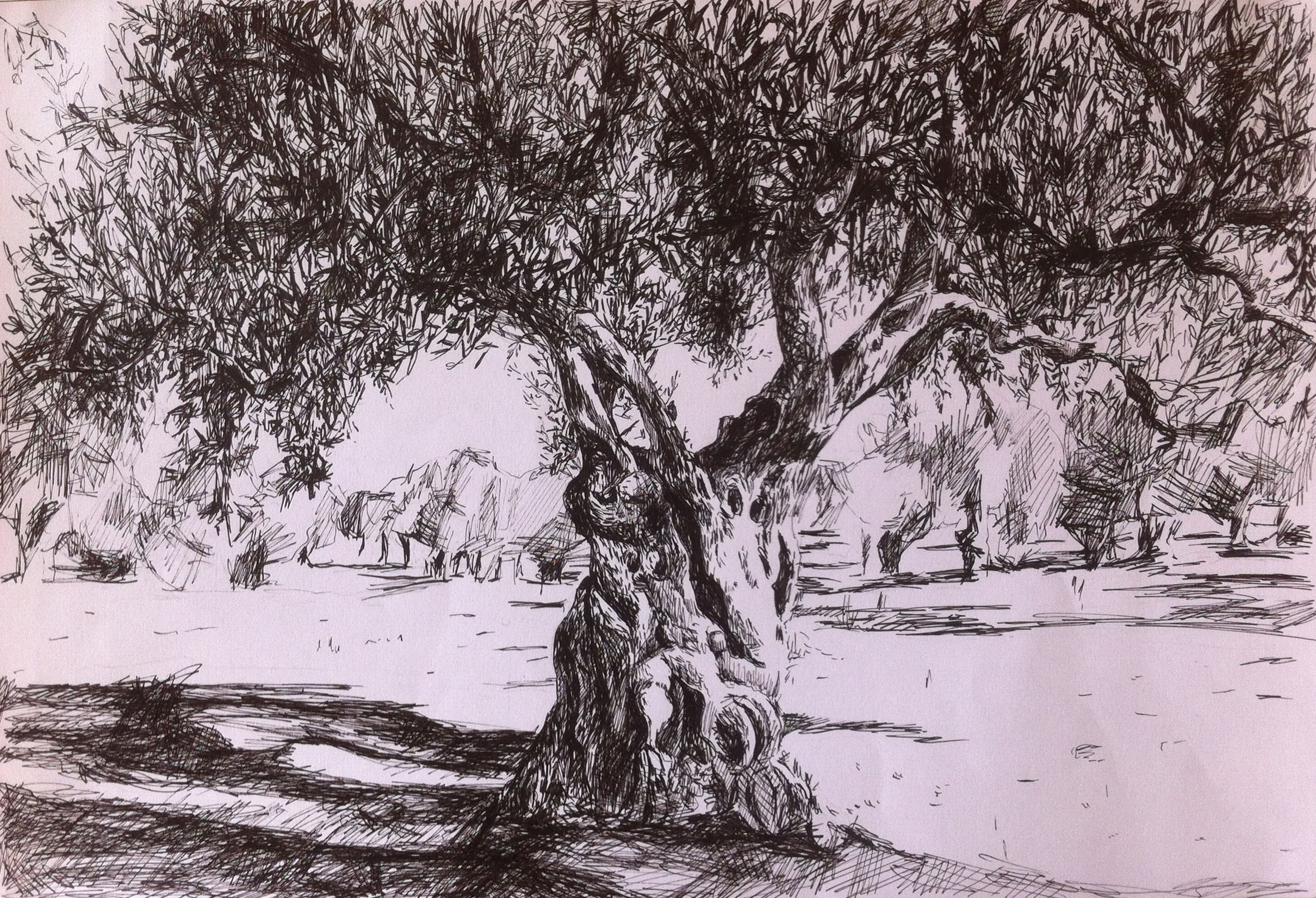 How to draw a shaded tree with landscape for beginners ... |Tree Landscape Drawing